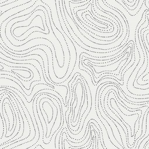 CAP-RV-8001 Waves of Echo